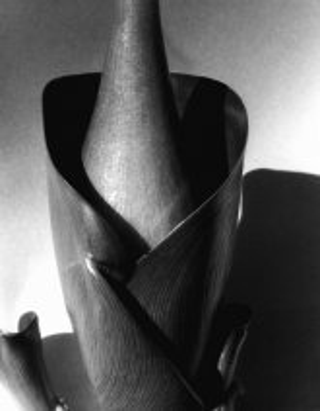 Imogen_Cunningham_Water_Hyacinth2_1920s