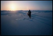 The Arctic tundra, shot on a Leica © Martin Hartley.