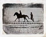 Eadweard Muybridge - Leland Stanford Jr on his pony - phases of a stride by a pony while cantering