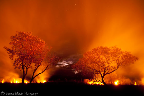 Bence Máté (Hungary) - Fire on the Pantanal