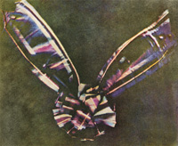 james_clerk_maxwell_tartan_ribbon