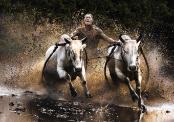 Chan Kwok Hung, winner in the Action category , Sony World Photography Awards Open competition