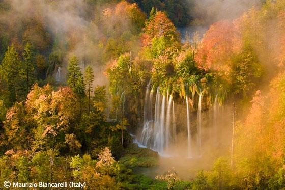 Maurizio Biancarelli (Italy) - A wild wonder of Europe
