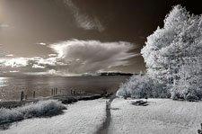 infrared_standard_color_lifepixel
