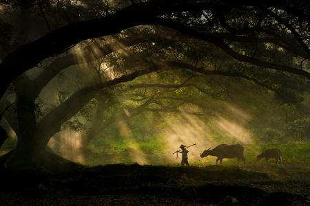 James Chong, winner in the Travel category , Sony World Photography Awards Open competition
